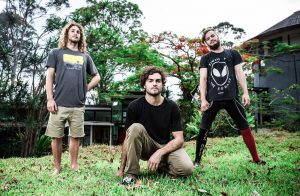 Atticus Chimps band on grass photo
